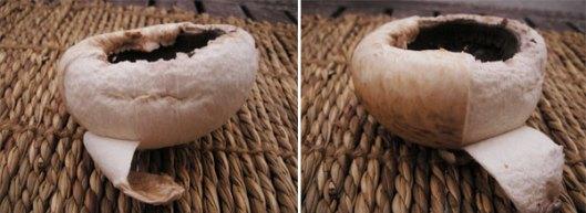 champiñones rellenos gratinados al horno 9