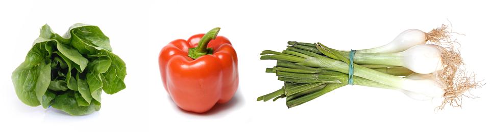 vegetarte